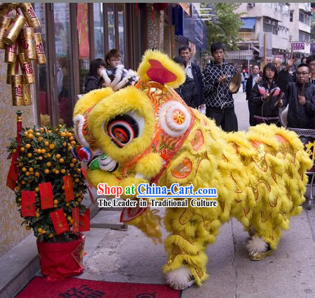 Supreme Traditional Handmade Lucky Feng Shui Long Wool Lion Dance Costume Complete Set