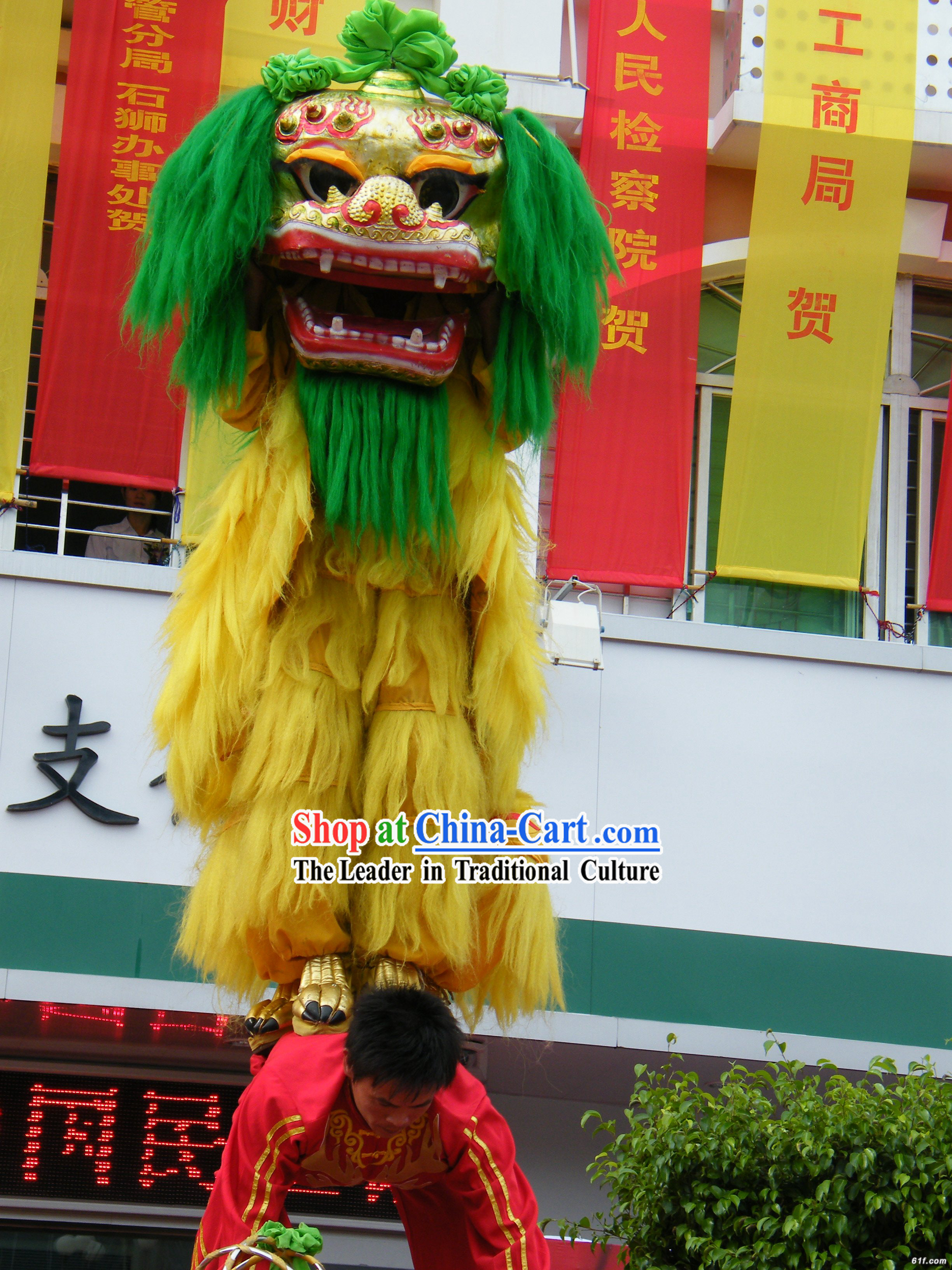 Green Hair Peking Northern Lion Dance Outfit Complete Set