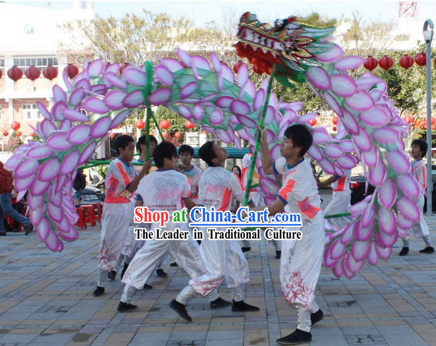 Traditional Chinese Lotus Dragon Dance Costumes Complete Set