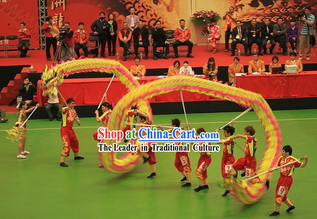 Competition and Parade Glowing In Dark Dragon Dancing Costume Complete Set