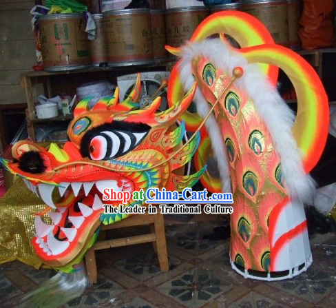 Adult Size Phoenix Tail Pattern Luminous Dragon Dancing Costumes Complete Set