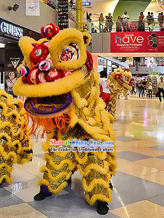Shopping Mall Play and Display Opening Lion Dance Costume Complete Set