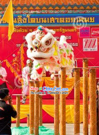 Rainbow Color Lion Dance Head and Tail Costumes Complete Set