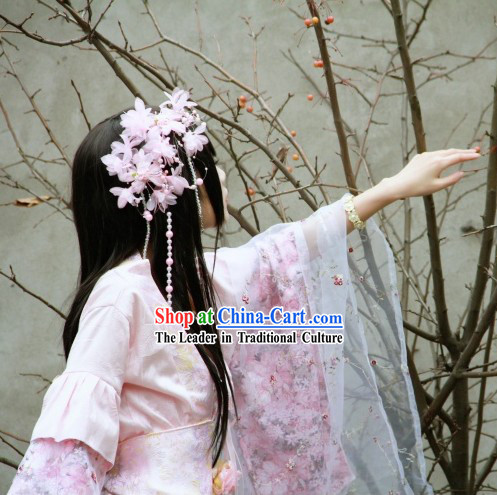 Chinese Classicial Princess Pink Cosplay Costumes and Hair Accessories Complete Set