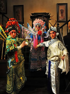 Beijing Opera & other Opera Costumes