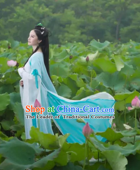 Traditional Chinese Fairy Costumes and Hair Jewelry Complete Set