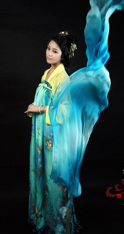 China Tang Maid Costumes Carnival Costumes Dance Costumes Traditional Costumes for Women