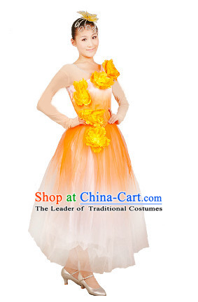 Chinese Stage Dance Costume Ideas Dancewear Supply Dance Wear Dance Clothes Suit and Headpieces Complete Set