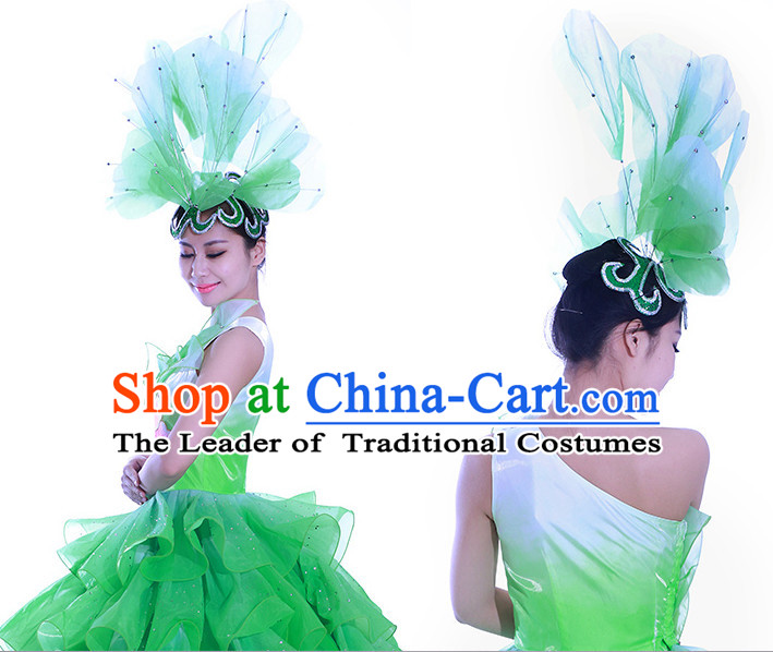 Green Chinese Flower Dance Costume Dance Costumes Fan dance Umbrella Ribbon Fans Water Sleeve Dancer Dancing Costumes Complete Set