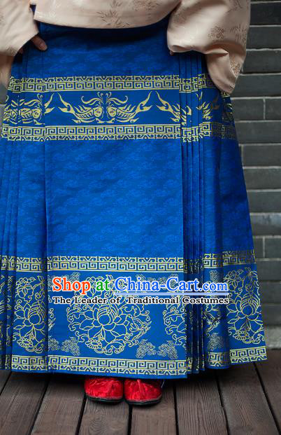 Traditional Chinese Ming Dynasty Young Lady Embroidered Costume Blue Skirt, Asian China Ancient Hanfu Horse-face Skirt for Women