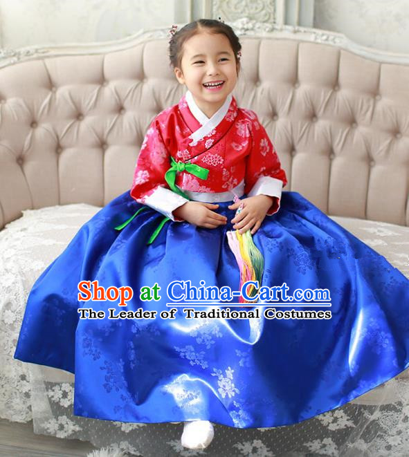 Asian Korean Traditional Handmade Formal Occasions Costume Palace Princess Embroidered Red Blouse and Blue Dress Hanbok Clothing for Girls