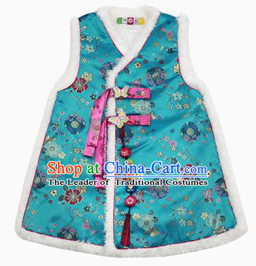 Asian Korean National Traditional Handmade Formal Occasions Girls Hanbok Costume Embroidery Blue Vests for Kids
