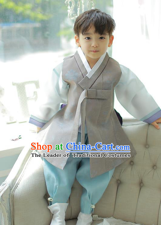 Asian Korean National Handmade Formal Occasions Embroidered Grey Palace Prince Hanbok Costume Complete Set for Boys