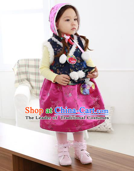 Asian Korean National Handmade Formal Occasions Wedding Bride Clothing Navy Vest and Rosy Dress Palace Hanbok Costume for Kids