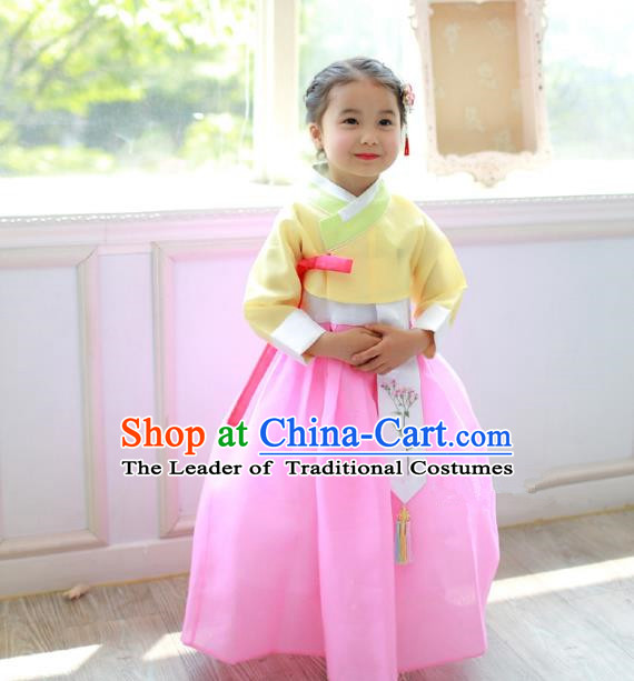 Traditional Korean National Handmade Formal Occasions Girls Clothing Palace Hanbok Costume Embroidered Yellow Blouse and Pink Dress for Kids