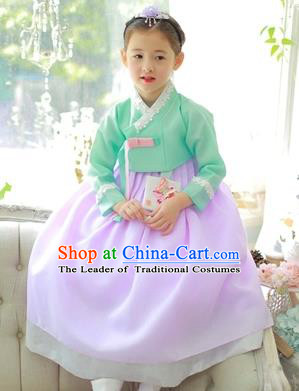 Traditional Korean National Handmade Formal Occasions Girls Clothing Palace Hanbok Costume Embroidered Green Blouse and Purple Dress for Kids