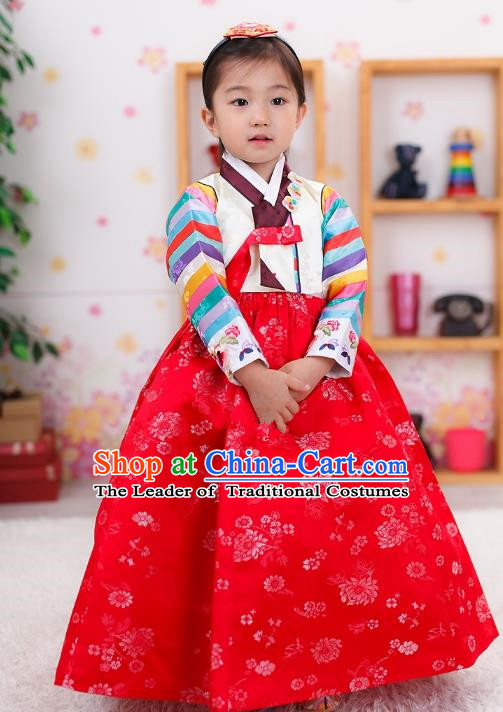 Traditional Korean Handmade Formal Occasions Embroidered Girls Costume, Asian Korean Apparel Bride Hanbok Red Dress Clothing for Kids