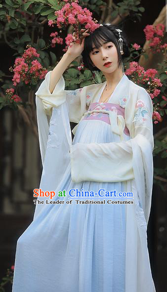 Traditional Ancient Chinese Female Costume Embroidered Two Pieces Dress, Elegant Hanfu Clothing Chinese Tang Dynasty Embroidered Palace Princess Dress for Women