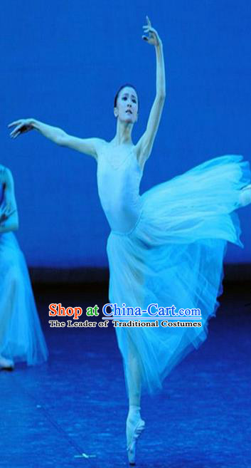 Traditional Modern Dancing Compere Costume, Female Opening Classic Chorus Singing Group Dance Bubble Dress Tu Tu Dancewear, Modern Dance Classic Ballet Dance Long Veil Dress for Women