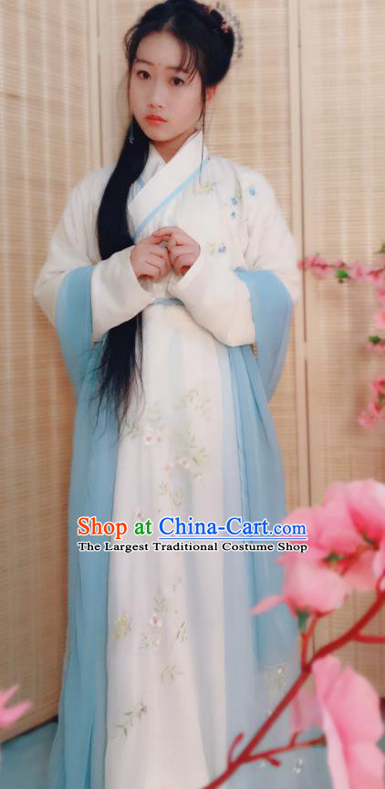 Traditional Chinese Ming Dynasty Nobility Lady Costumes Ancient Swordswoman Embroidered Clothing for Women