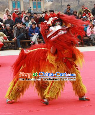 Chinese Traditional Parade Red Long Wool Lion Head Professional Lion Dance Costumes Complete Set