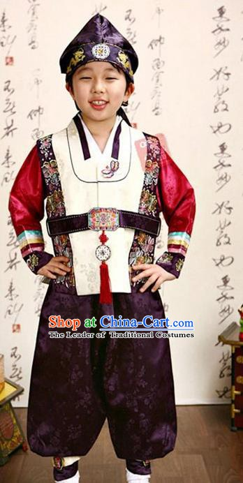 Korean Traditional Hanbok Clothing Korean Boys Hanbok Costumes White Shirt and Purple Pants for Kids