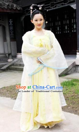 Ancient Chinese Tang Dynasty Princess Embroidered Hanfu Dress Replica Costume for Women