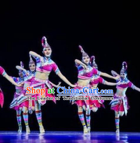 Traditional Chinese She Nationality Folk Dance Embroidered Costume, China Zhuang Ethnic Minority Dance Clothing for Women