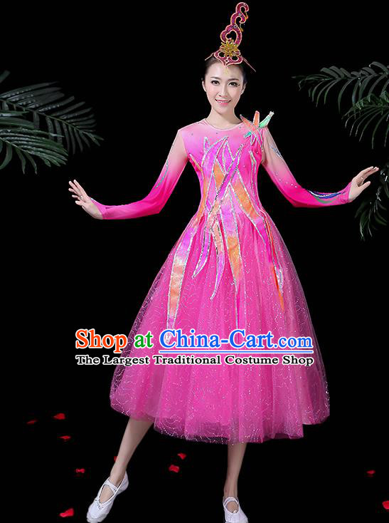 Professional Modern Dance Costume Chorus Folk Dance Pink Veil Dress for Women