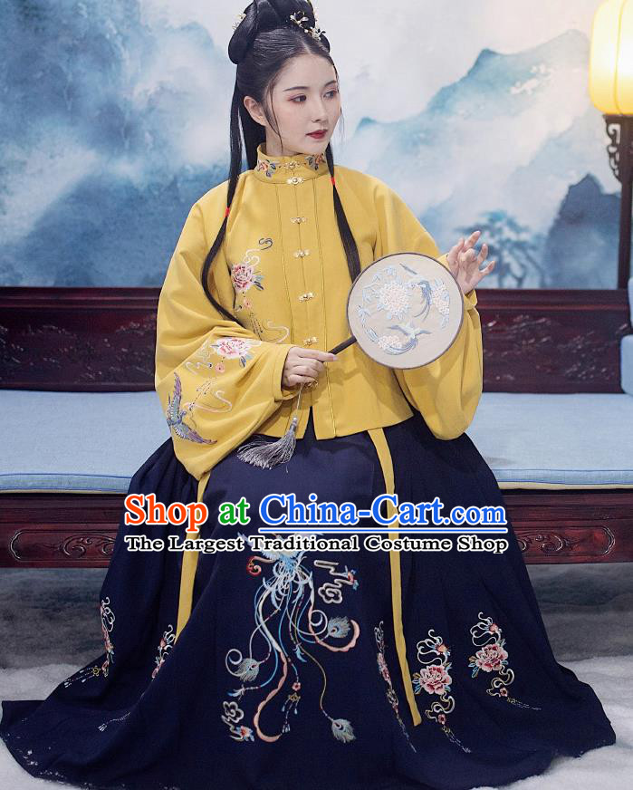 Traditional Chinese Ming Dynasty Nobility Lady Replica Costumes Ancient Palace Princess Hanfu Dress Complete Set