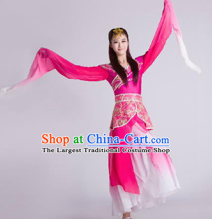Chinese Traditional Classical Dance Rosy Costume Water Sleeve Dance Stage Performance Costume for Women