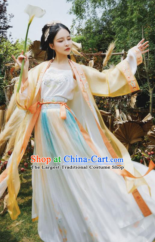 Ancient Chinese Young Lady Apparels Women Historical Costumes Traditional Song Dynasty Female Hanfu Dress