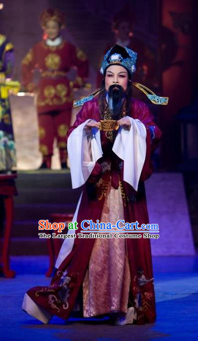 The Number One Scholar Is Not Love Chinese Yue Opera Official Clothing Costumes and Headwear Shaoxing Opera Laosheng Apparels Elderly Male Tang Bailing Garment