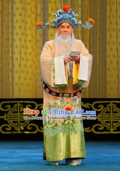 Chained Traps Chinese Peking Opera Elderly Male Garment Costumes and Headwear Beijing Opera Apparels Minister Clothing