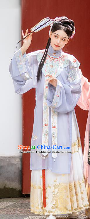 Chinese Traditional Ming Dynasty Historical Costumes Ancient Noble Female Hanfu Dress Embroidered Garment for Women