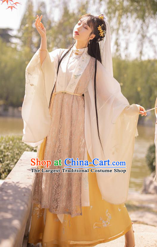 Traditional Chinese Ming Dynasty Royal Princess Historical Costumes Ancient Noble Female Embroidered Hanfu Dress Apparels